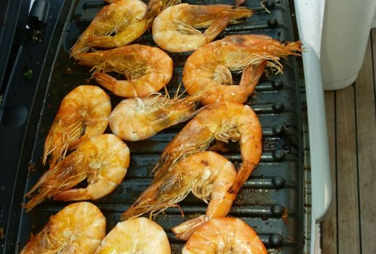 Lets have Grilled prawns during your yacht fishing trip